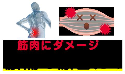 筋肉にダメージ、腰痛の原因に
